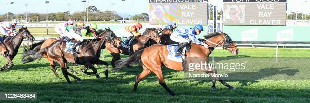 El Questro ridden by Teodore Nugent wins the Vale Ray Cleaver BM78 Handicap at Cranbourne Racecourse on September 13 2020 in Cranbourne Australia