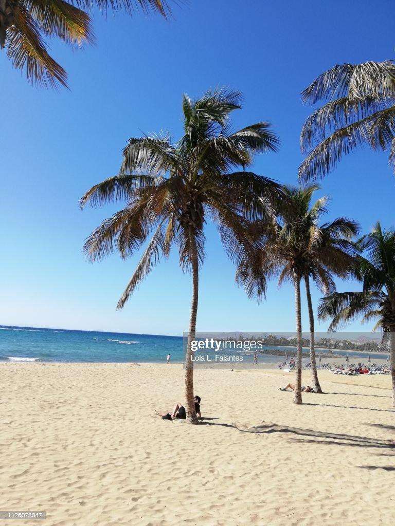 El reducto Beach, Arrecife : Foto de stock
