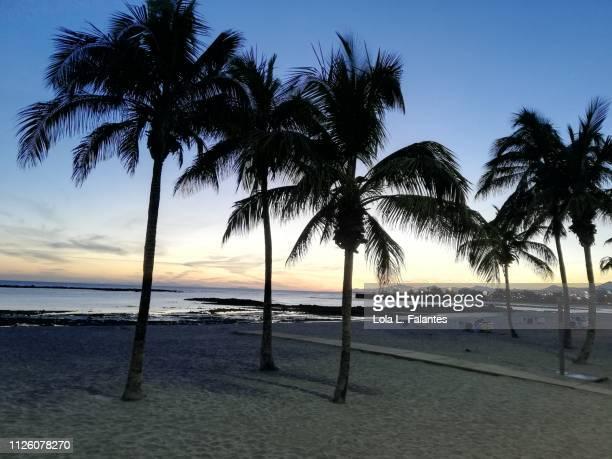 El reducto Beach, at sunset Arrecife