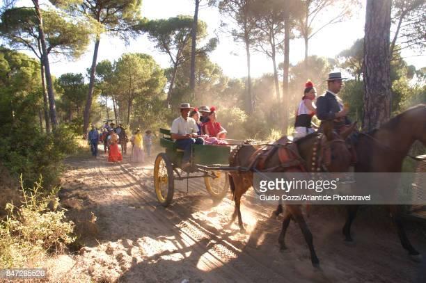El Rocio procession, pilgrims during last part of procession from El Caoso to Rocio