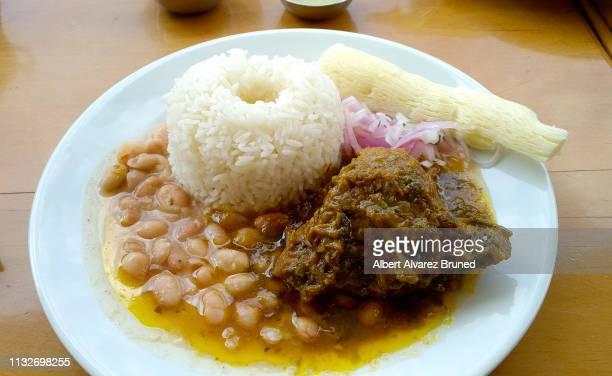 el seco de cabrito, peruvian dish. - comida peruana fotografías e imágenes de stock