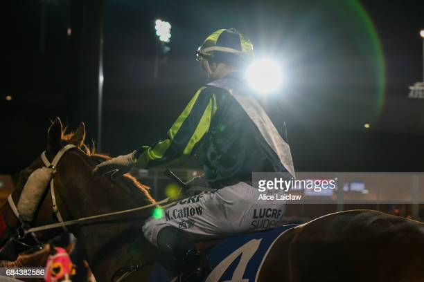El Sicario ridden by Noel Callow returns after wining the Black Leopard Skin Care BM70 Handicap at Racingcom Park Synthetic Racecourse on May 18 2017...