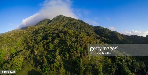 el yunque national forest - paisajes de puerto rico fotografías e imágenes de stock