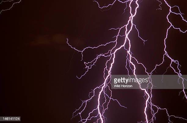 Elaborately branched cloudtoground lightning discharge Tucson Arizona USA