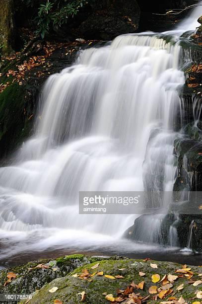 elakala falls - monongahela national forest stock photos and pictures