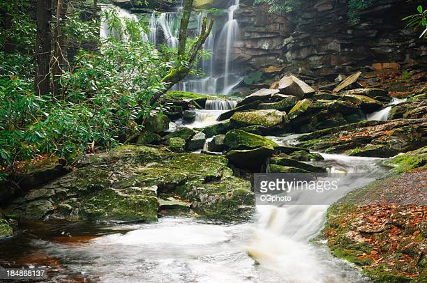 elakala falls, west virginia - ogphoto stock photos and pictures