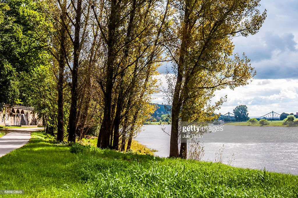 Elbe in Dresden : Stock Photo