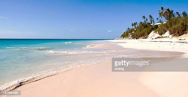 elbow beach, bermuda - bermuda stock pictures, royalty-free photos & images