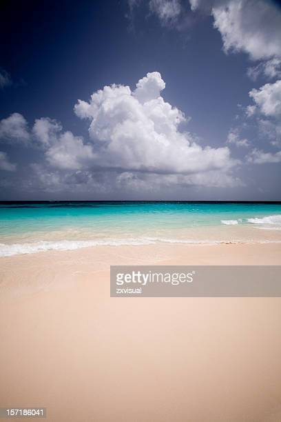 elbow beach in bermuda - bermuda stock pictures, royalty-free photos & images