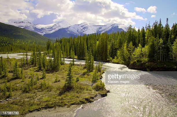 elbow river in spring - kananaskis country stock pictures, royalty-free photos & images