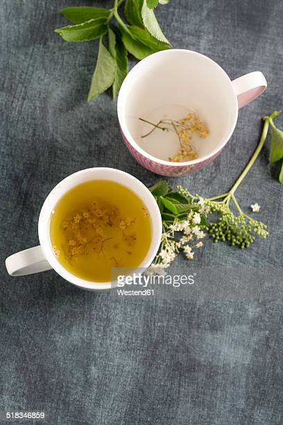 elderberry tea in tea cup and elderflower - herbal tea stock pictures, royalty-free photos & images