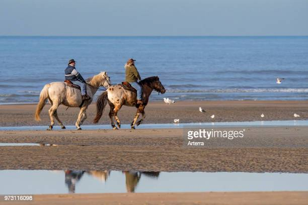 Elderly couple riding horseback on sandy beach along the North Sea coast on a cold day in winter