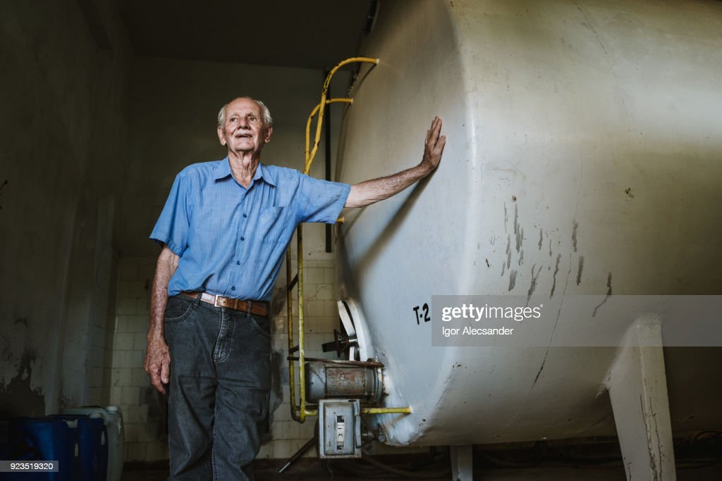 Elderly in dairy industry : Stock Photo
