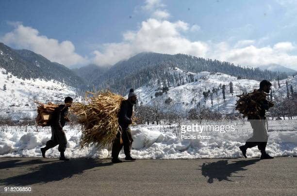Elderly Kashmiri men carry firewood on their shoulders with Surrounding snow Mountains near Daksum about 97 kilometers south of Srinagar city the...