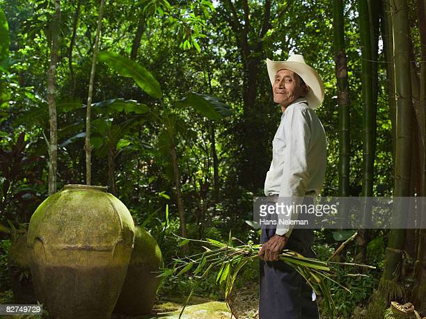 elderly man gathering bamboo in the forest - las posas stock pictures, royalty-free photos & images