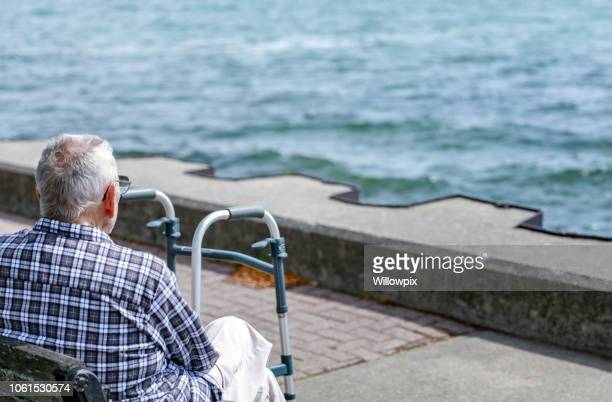 elderly man mobility walker tourist sitting at the lake - finger lakes stock pictures, royalty-free photos & images