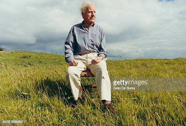 elderly man sitting in meadow - chair stock pictures, royalty-free photos & images