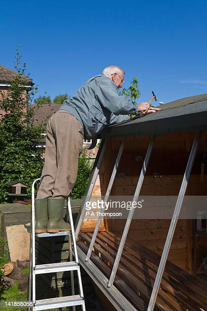 elderly man up ladders, fixing the roof a potting shed, wirral, england mr pr - roof stock pictures, royalty-free photos & images