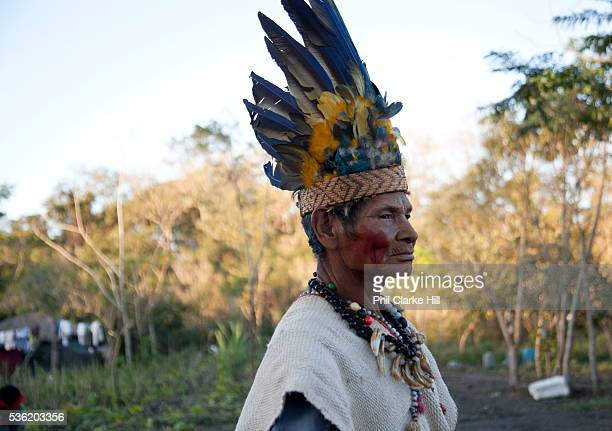 Elderly old Guarani man in a tradtional headress The Guarani are one of the most populous indigenous populations in Brazil but with the least amount...