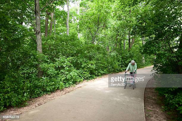 elderly woman on wooded path in michigan - terryfic3d stock pictures, royalty-free photos & images