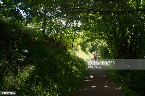 Elderly woman walking amongst green trees
