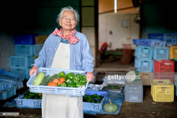 elderly woman with grey hair standing in front of barn, holding blue plastic crate with fresh vegetables, smiling at camera. - ワーキングシニア ストックフォトと画像