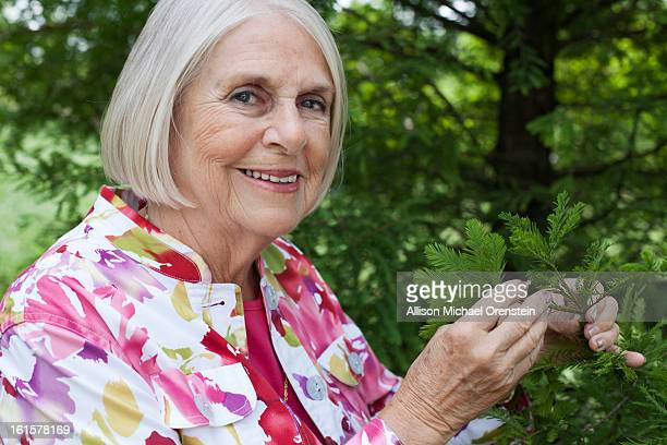 Elderly woman with pine trees