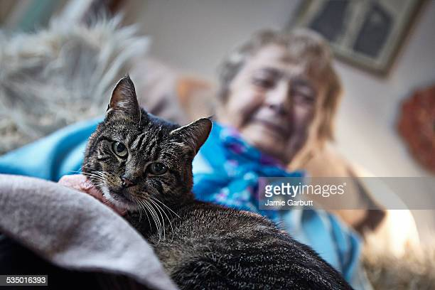 Elderly women sat with her cat at home