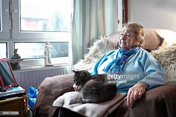 elderly women sitting with her cat - tabby stock pictures, royalty-free photos & images