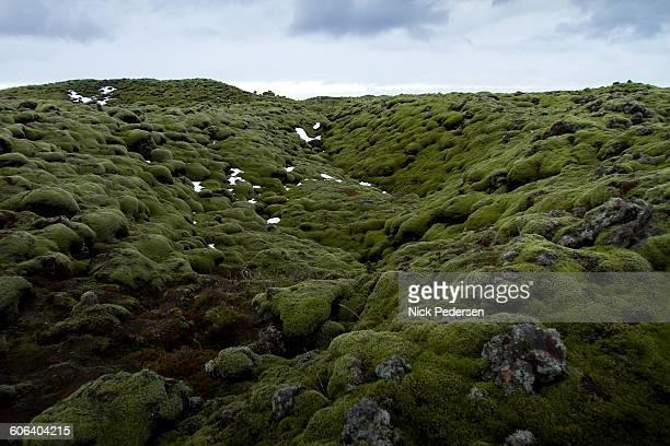 eldhraun lava field - lava plain stock pictures, royalty-free photos & images
