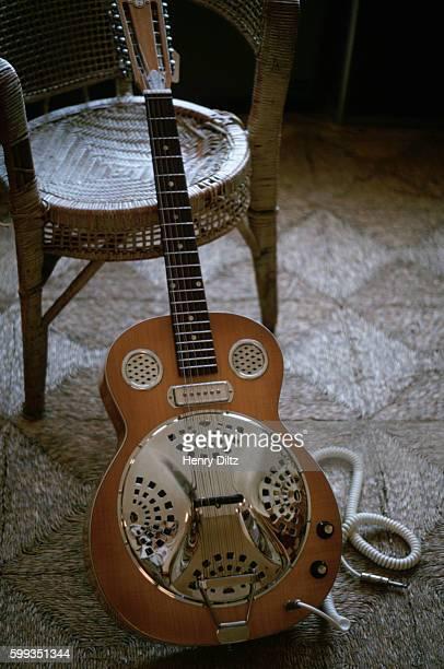 Electric 12String Dobro Guitar