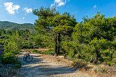 electric bicycle top penteli mountain ebike