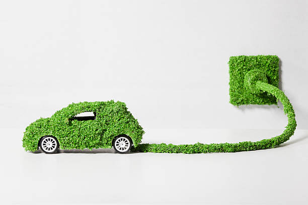 Electric Car Covered With Grass Connected To Socket, Close Up Wall Art