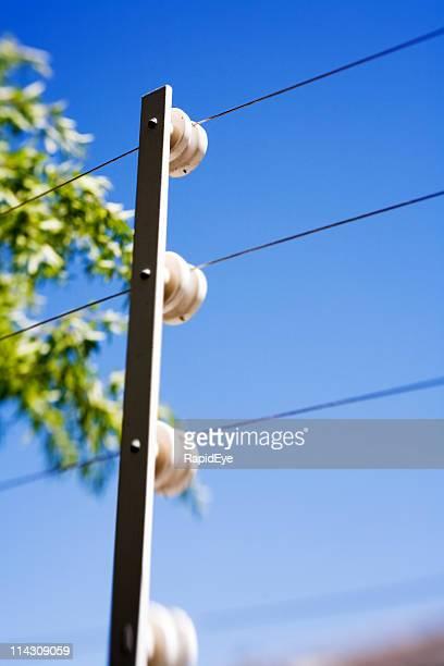 Electric valla