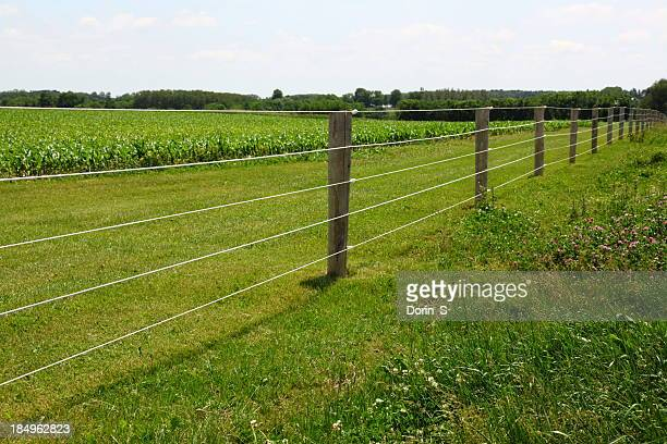 electric fence - hek stockfoto's en -beelden