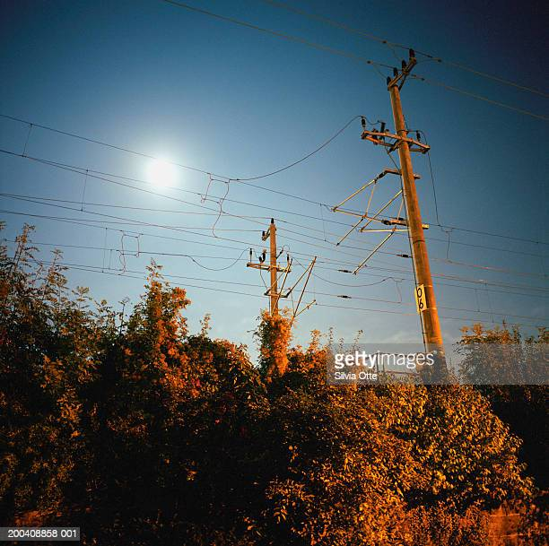 Electric power lines, low angle view