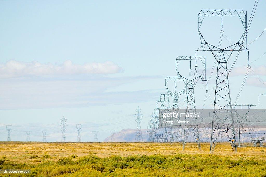 Electrical pylons in field : Foto stock