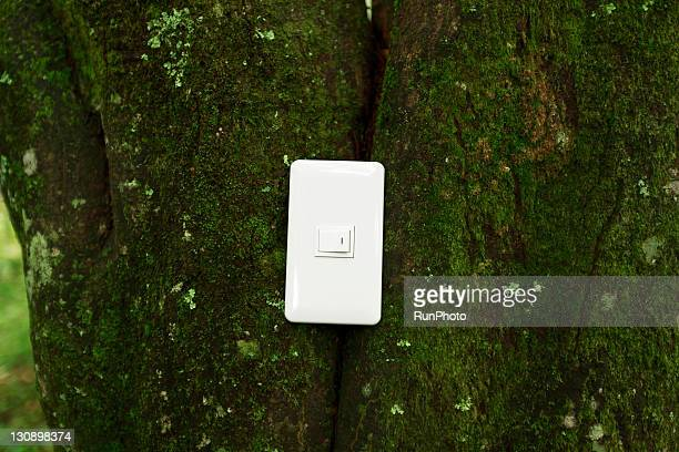 Electrical switch on tree