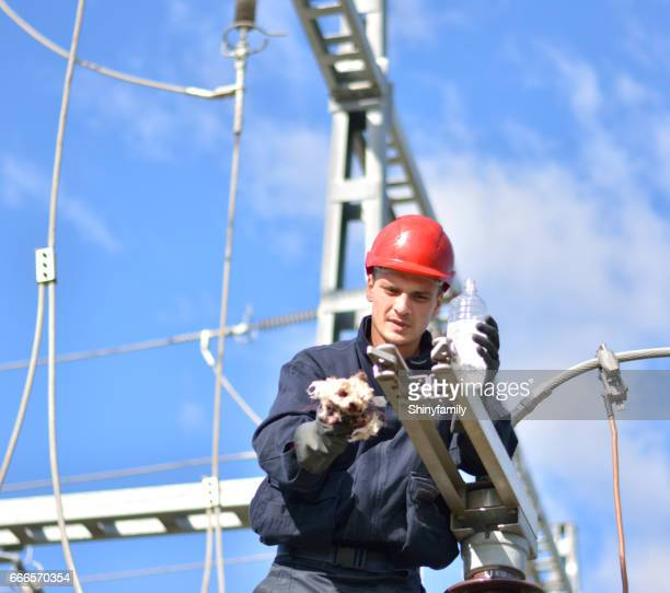 Electrician working at the height of the electricity substation