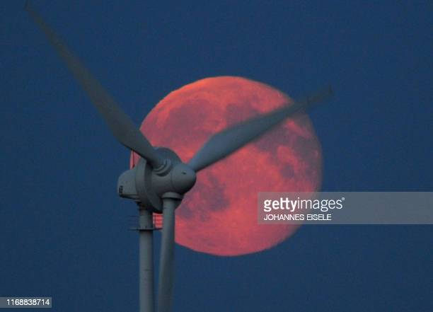 A electricity generating wind turbine is seen in front of the full moon on July 27 2010 near the northern German town of Husum AFP PHOTO / JOHANNES...