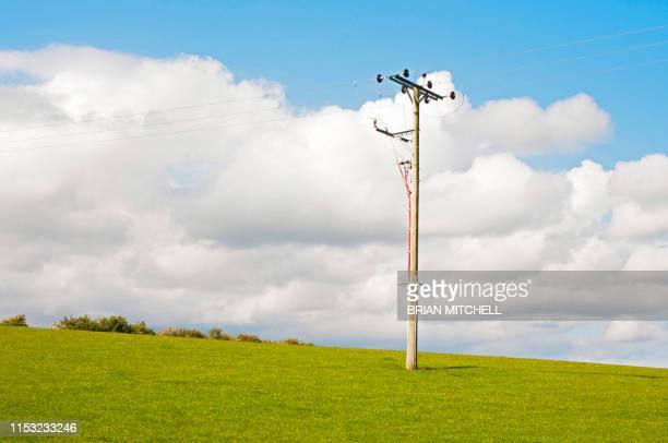 electricity high voltage cable pole in a rural setting - image stock pictures, royalty-free photos & images