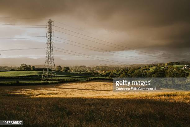 electricity pylon in an epic countryside landscape at dusk. - sunrise dawn stock pictures, royalty-free photos & images