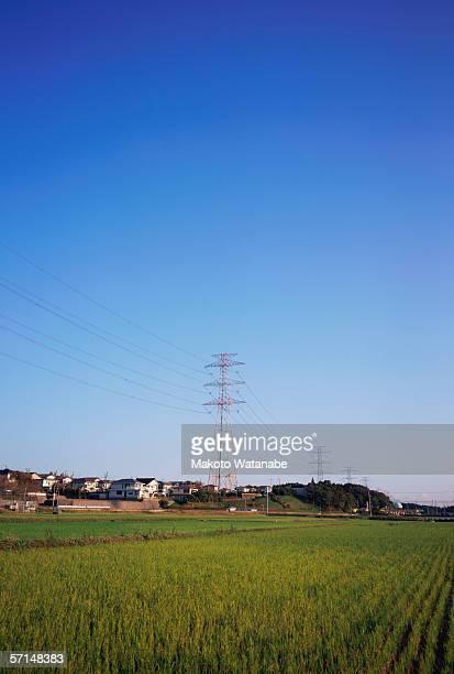 Electricity pylon in field