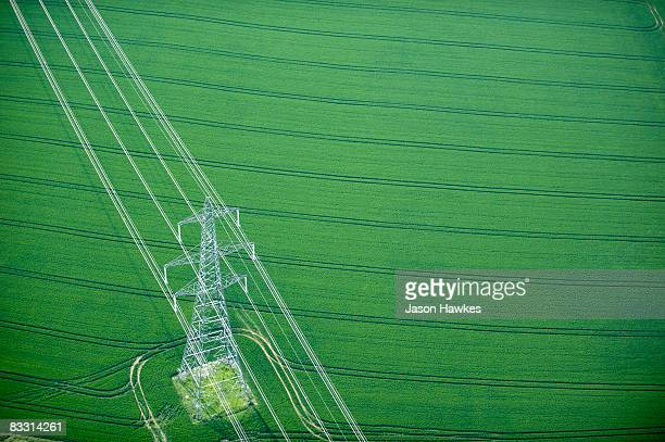 electricity pylon in wheat field - electrical component stock photos and pictures
