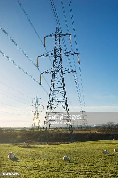 Electricity pylons across famland