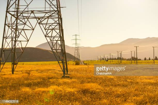 electricity pylons in the countryside, south island, new zealand - power line stock pictures, royalty-free photos & images