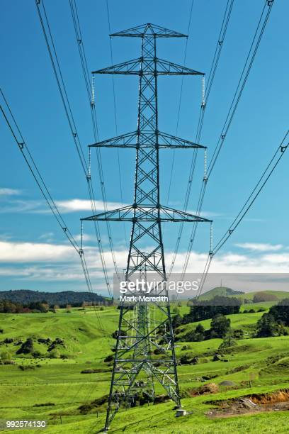 Electricity pylons march across the Waikato countryside