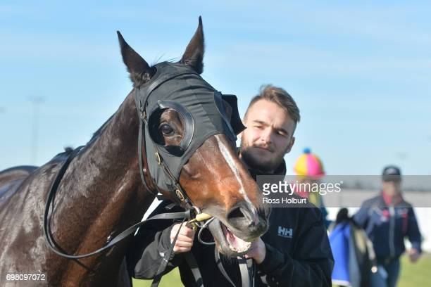 Electrolyte after winning the ISG Projects Maiden Plate at Racingcom Park Synthetic Racecourse on June 20 2017 in Pakenham Australia