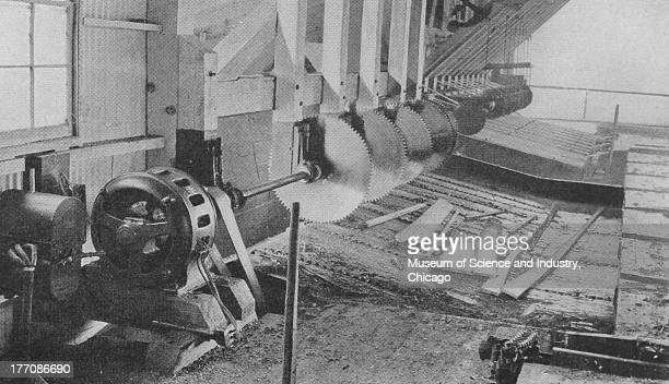 Electronically Driven Saw Mills Cut 11896 black and white of Slab Slashers manufactured by Allis Chalmers at the Black River Lumber Company Willetts...