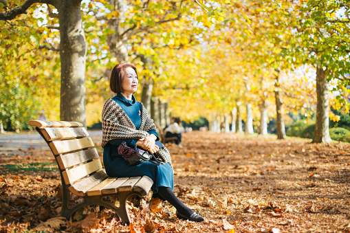 elegant asia woman sitting in bench in nature, autumn - gettyimageskorea